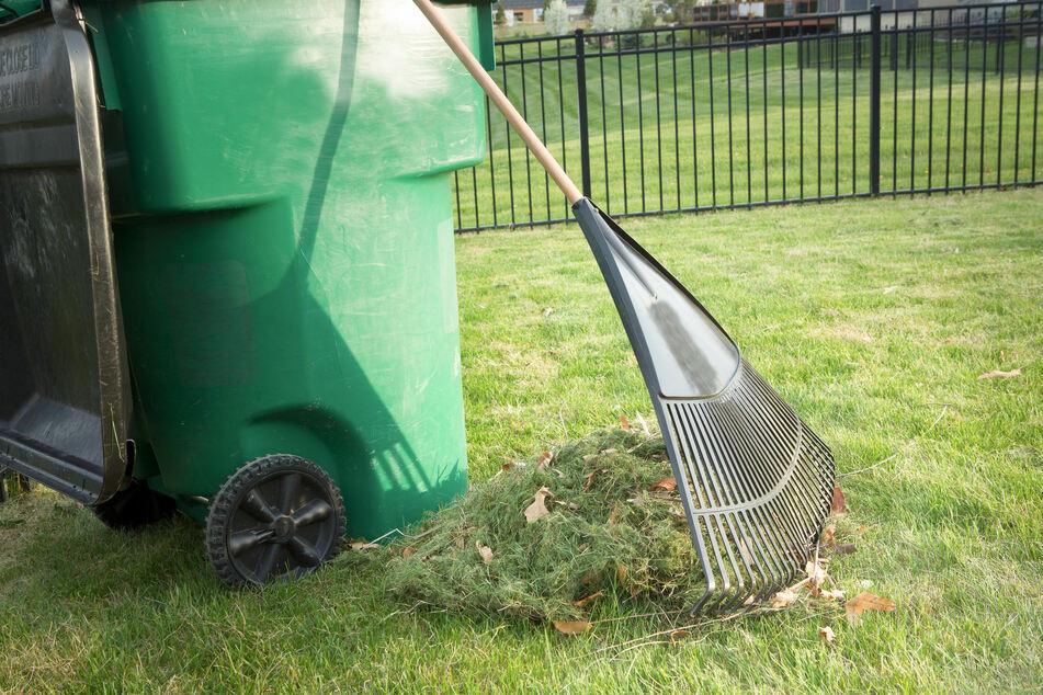 Grasabschnitt darf nicht einfach wild in der Umwelt entsorgt werden
