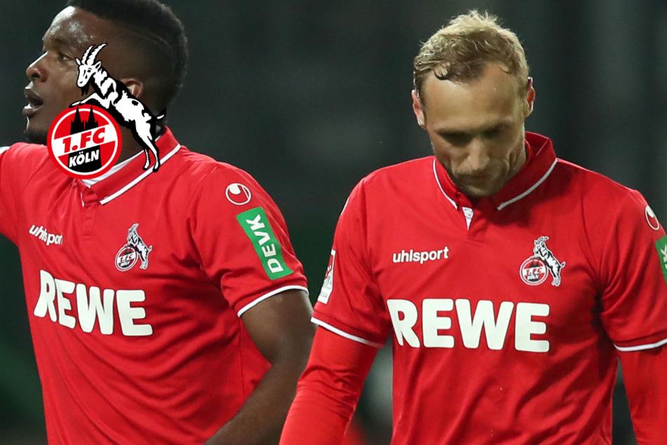 Marcel Risse nicht im Training: Zwei Spieler beim 1. FC Köln ohne Zukunft!