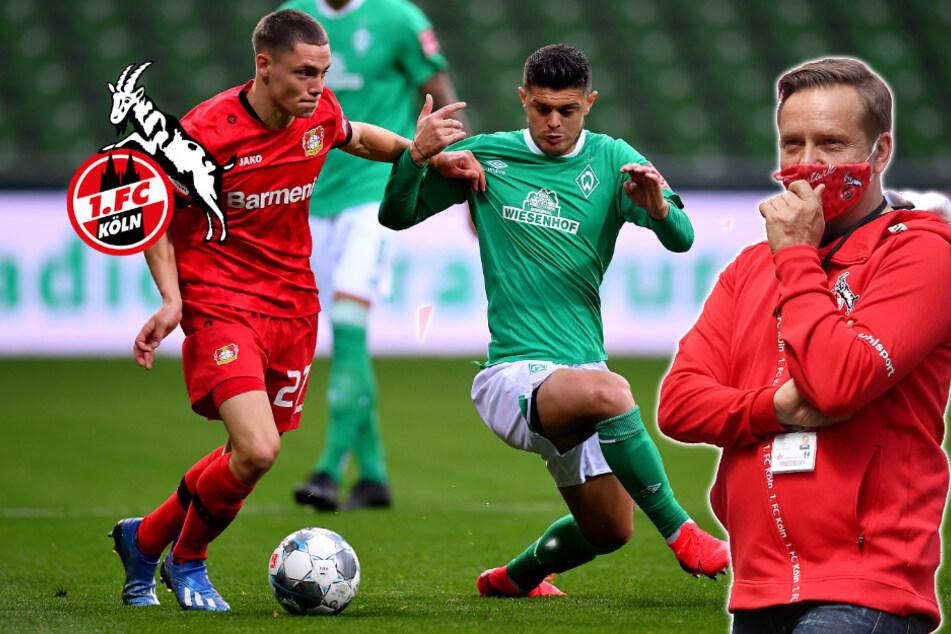 """Vor Derby: Heldts """"Warnung"""" an den Ex-Kölner Florian Wirtz"""