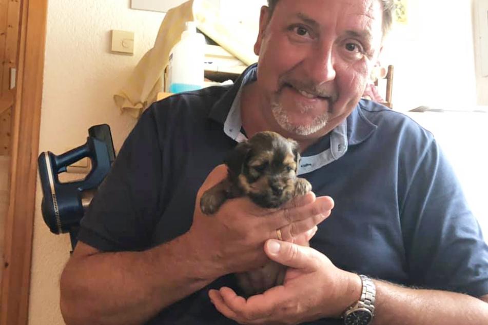 """Gibt es ein Leben ohne Hunde? Ja, aber es ist sinnlos. Thomas Böttcher (55) hält Welpenmädchen """"Lilu"""" ganz sanft in seinen starken Händen."""