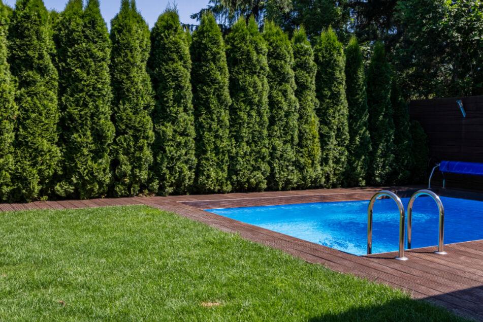 Mädchen (4) treibt leblos in Pool