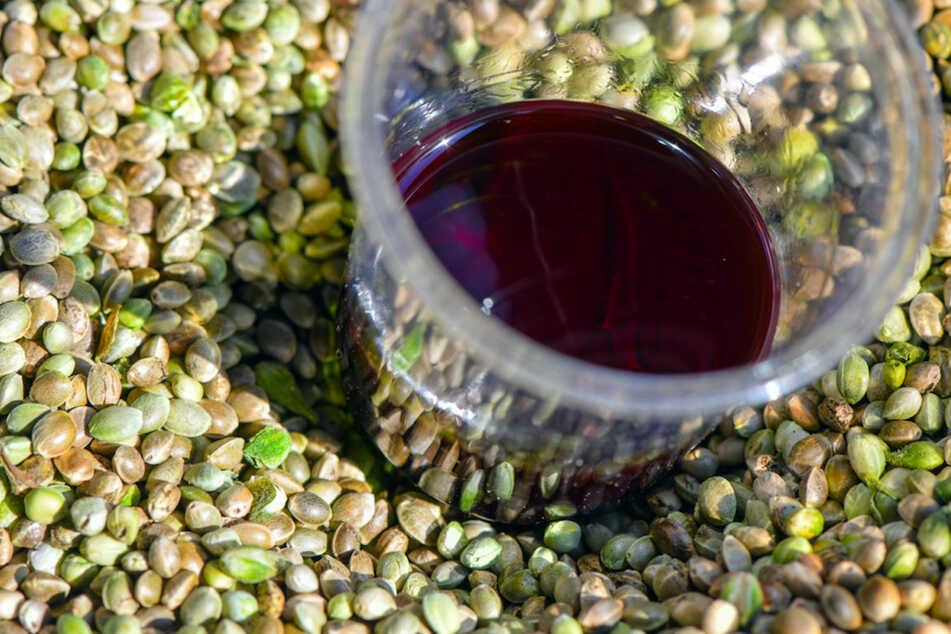 Die Samen von Hanf und das daraus gepresste Öl. Ein Hersteller aus Oberbayern hat nun sein Produkt zurückgerufen. (Symbolbild)