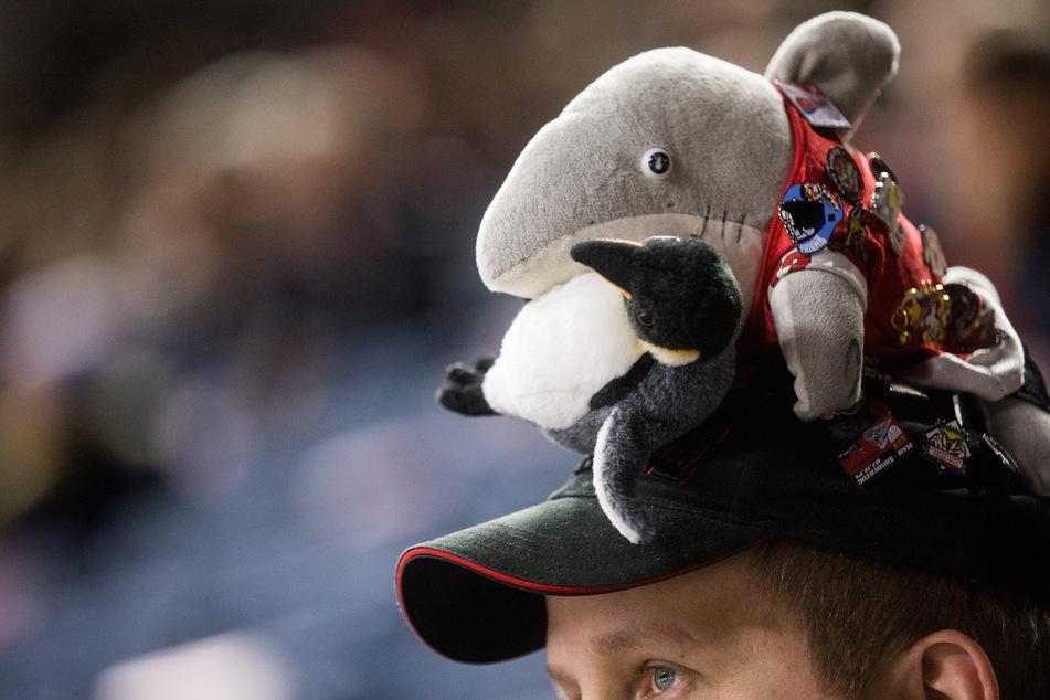 Maßnahme zur Rettung: Kölner Haie starten mit Verkauf symbolischer Tickets