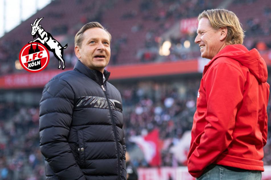1. FC Köln: Sportchef Heldt mit Arbeit von Trainer Gisdol zufrieden