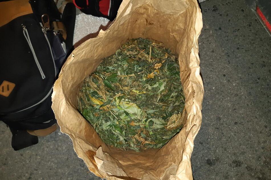 3,3 Kilogramm frisch geerntetes Marihuana fand die Bundespolizei bei einem Radfahrer (35).