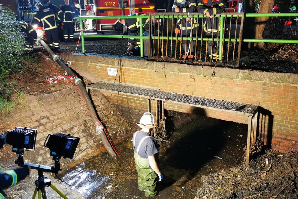 Die Feuerwehr pumpte Wasser aus dem Graben, um den Fisch zu retten.