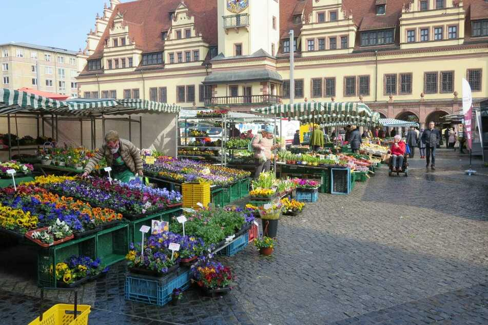 Gähnende Leere auf dem Leipziger Wochenmarkt am Marktplatz.