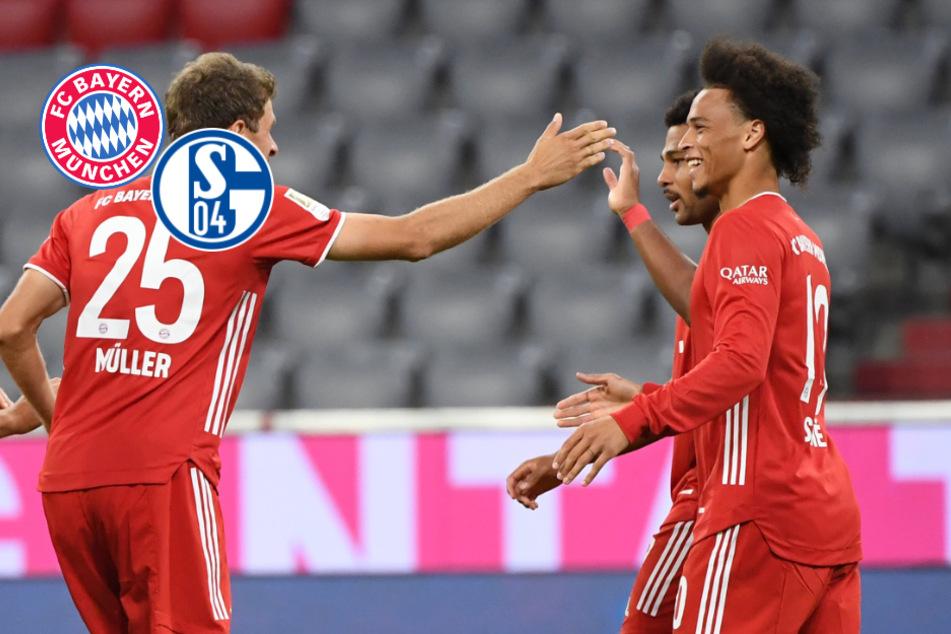 FC Bayern mit brutaler Machtdemonstration: Münchner zerstören Schalke mit 8:0!