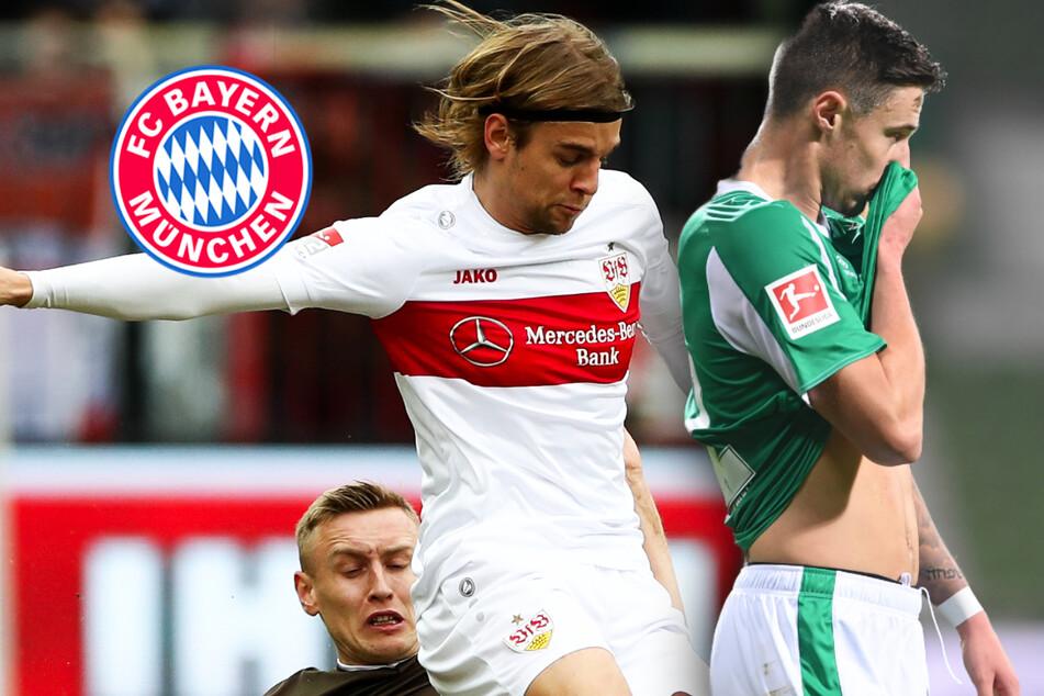 Will sich der FC Bayern diese Stars von Stuttgart und Bremen schnappen?