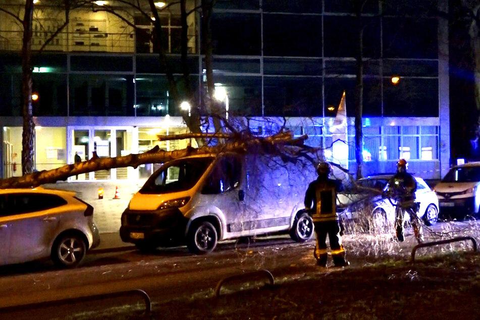 Stürmischer Wind hat in Nordrhein-Westfalen zahlreiche Feuerwehreinsätze verursacht.