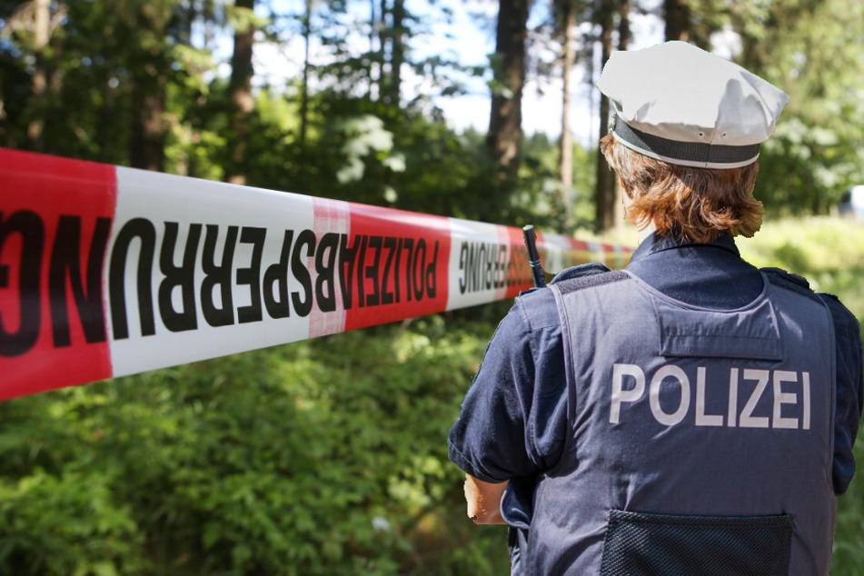 Polizei ermittelt: Forstmitarbeiter entdecken Leiche in Waldstück