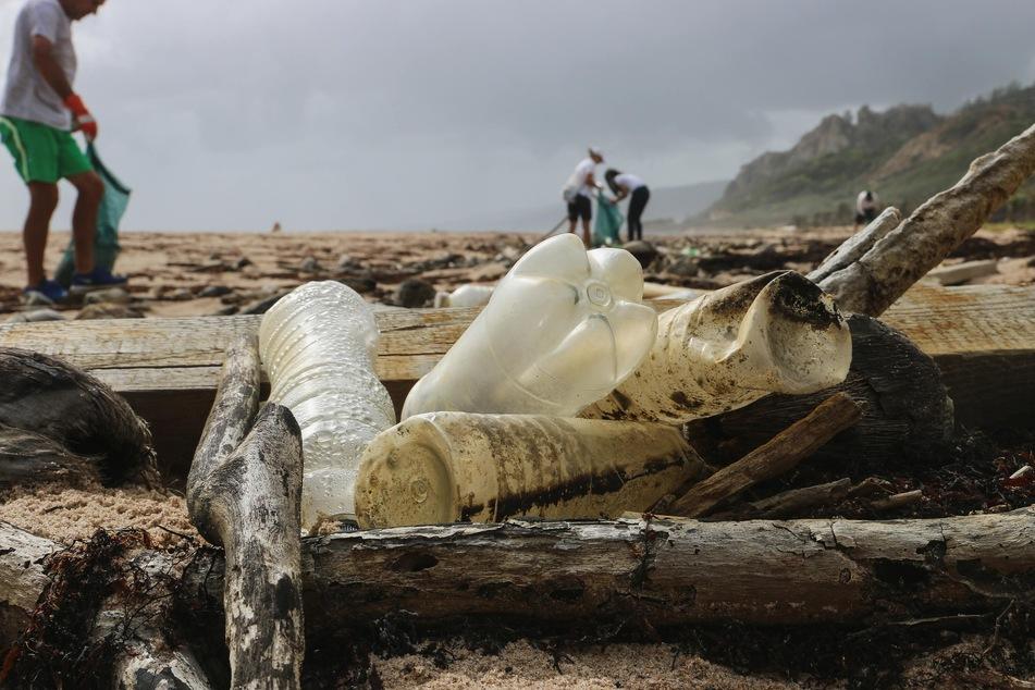 Schock-Studie enthüllt: So viel Plastik schwimmt wirklich in unseren Meeren
