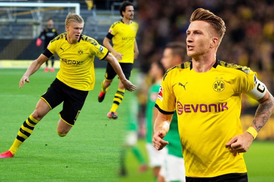 Erling Haaland (l.) und Marco Reus trainieren beim BVB wieder mit der Mannschaft.