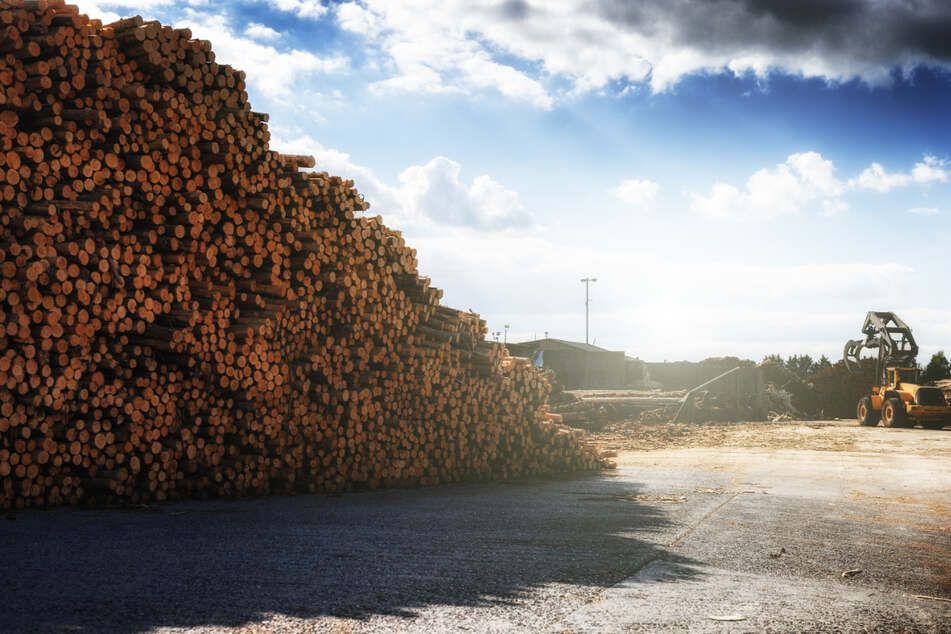 Rohstoffkrise: Wohnungsunternehmen fordern Exportstopp!