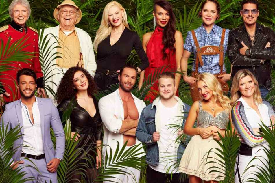 Diese 12 Kandidaten ziehen am 11. Januar in den australischen Dschungel.