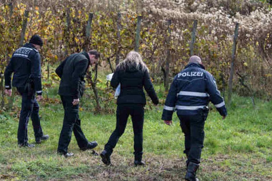 Die Polizei suchte im November das ganze Areal nach Spuren ab. Hinweise zum Täter wurden jedoch nicht gefunden.