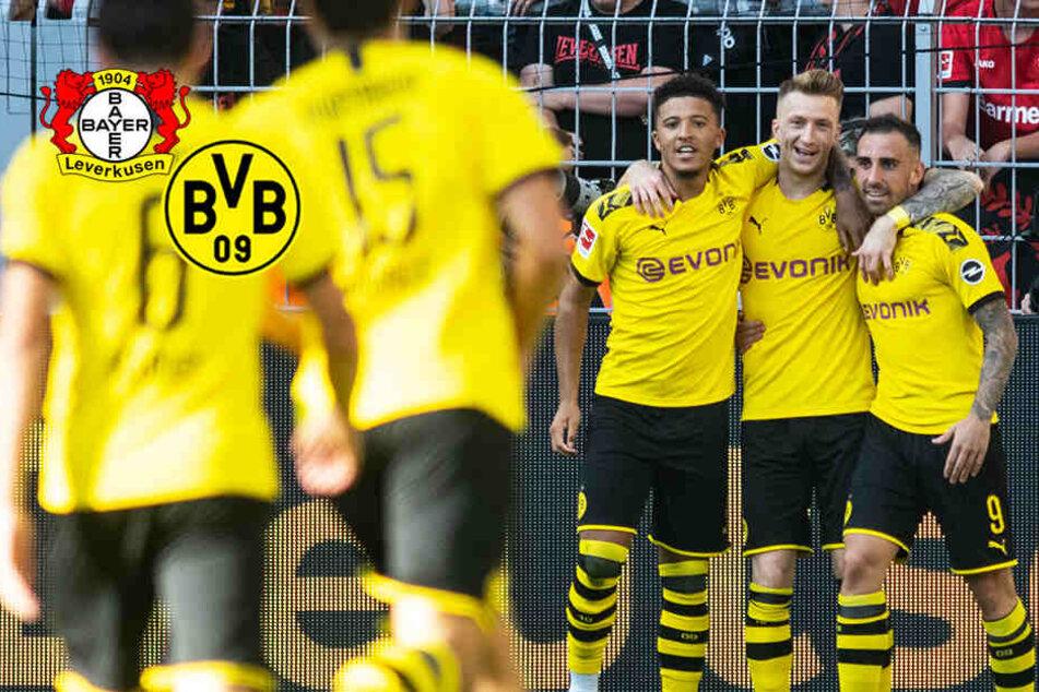 BVB begeistert: Dortmund triumphiert im Spitzenspiel gegen Leverkusen