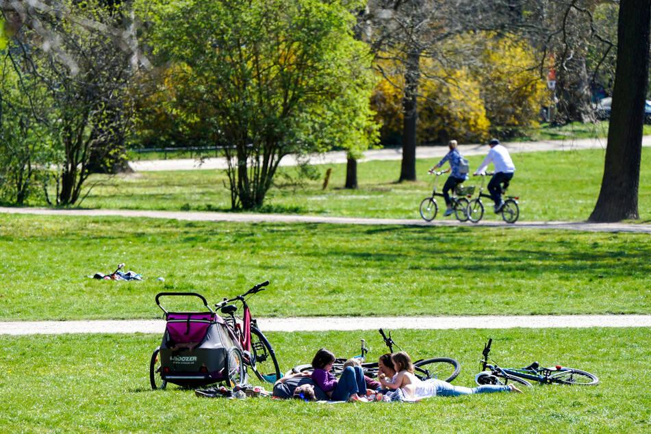 Bei sonnigem Wetter genießt eine Familie den Samstag in einem Leipziger Park.