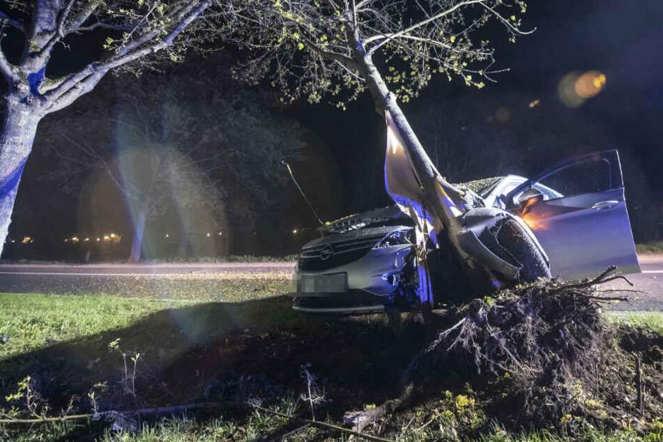 Auto wickelt sich nach heftigem Frontal-Crash um Baum