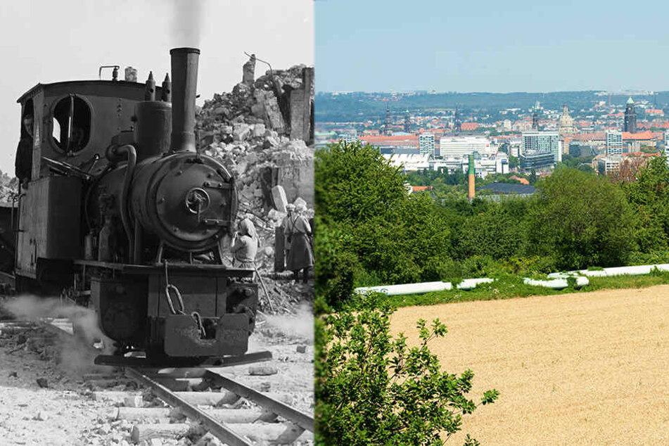 Dresden bekommt neuen Südpark: Weg der Trümmerbahn wird zum Erholungspark