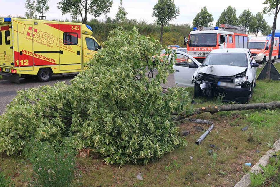 Der Dacia fällte einen Baum und ein Verkehrsschild.