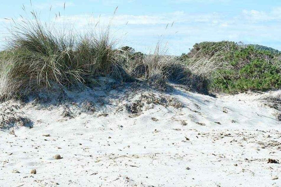Die Dünen werden durch Tausende Sex-Paare im Jahr immer mehr in Mitleidenschaft gezogen (Symbolfoto).