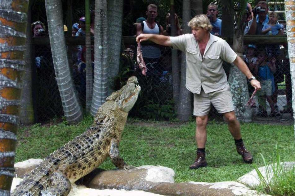 Tierfilmer und Abenteurer Steve Irwin (†44) starb bei einem Stachelrochen-Angriff.