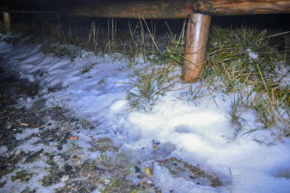 Am Montag lag an den Wegesrändern des Brocken zentimeterhoher Schnee. Vor einer Woche war es hier 20 Grad wärmer.