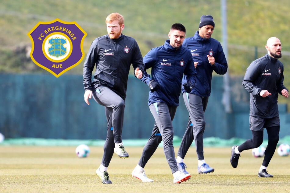 FC Erzgebirge Aue: Riese vor Blitz-Comeback, Kalig braucht Geduld