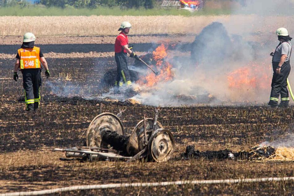 Ein Feld bei Hattersheim stand am Dienstag in Flammen.