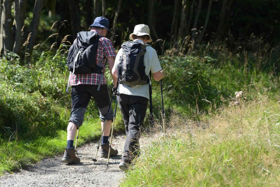 Bei gutem Wetter sollen 50 oder mehr Leute nackt in den Wäldern unterwegs sein. (Symbolbild)