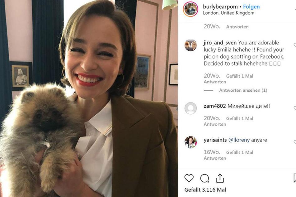 Emilia Clarke (32) ist auch auf diesem Foto, der Star ist aber jemand anderes...