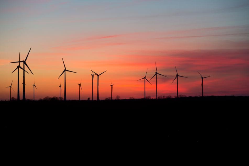 Windräder zeichnen sich vor der untergehenden Sonne im Landkreis Vorpommern-Greifswald ab. Der Landesverband Erneuerbare Energien fordert deutlich mehr Tempo beim Ausbau der Windkraftnutzung in Mecklenburg-Vorpommern.