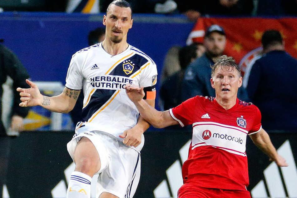 Im direkten Duell: Zlatan Ibrahimovic (l.) und Bastian Schweinsteiger.