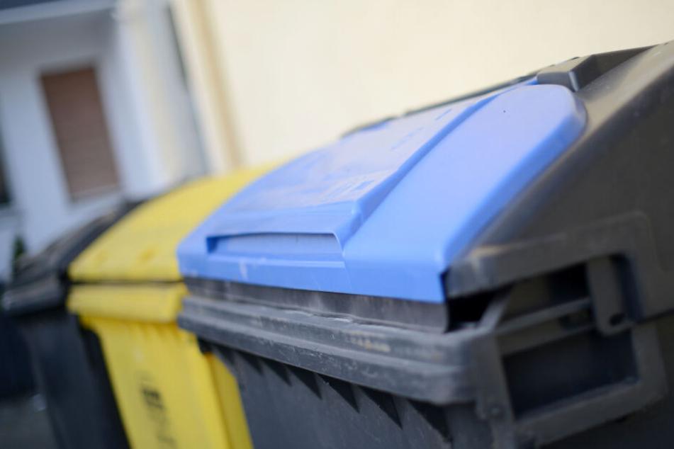 Wenn Lebensmittel aus dem Müllcontainern mitgenommen werden, ist das Diebstahl. (Symbolbild)