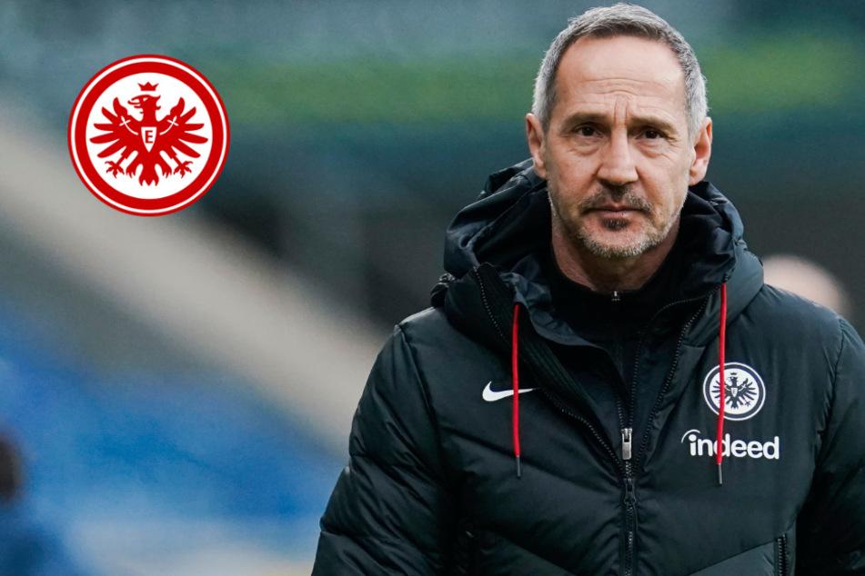 Entscheidung schon gefallen: Eintracht-Coach Adi Hütter spricht über Zukunft