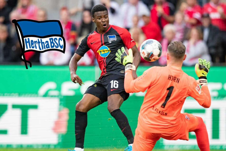 Hertha-Spieler Dilrosun will wieder für Oranje spielen!