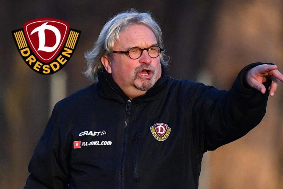 Dynamo-Trainer Scholz will einfach nur drei Punkte einfahren