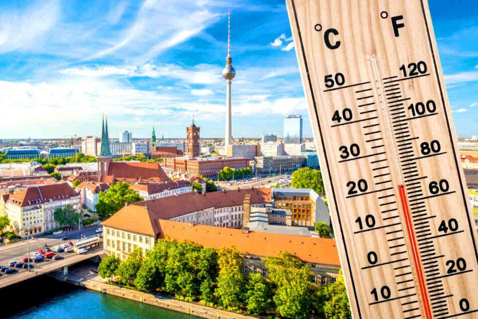 Am Wochenende können im Raum Berlin/Brandenburg bis zu 20 Grad werden (Symbolbild).