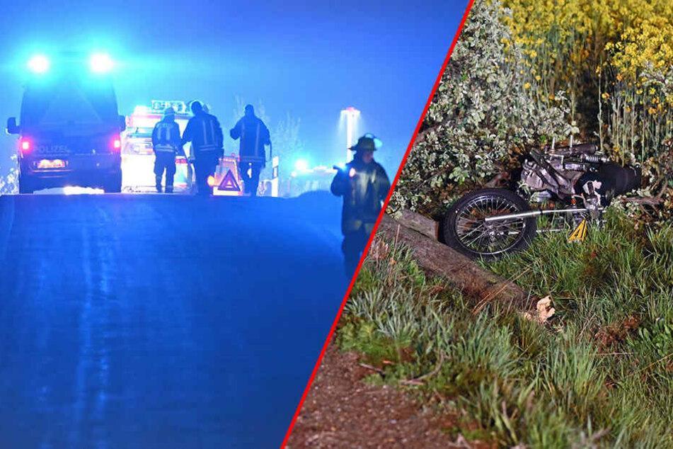 Biker (17) und Mitfahrerin (16) kommen von Straße ab, krachen gegen Baum und fällen ihn
