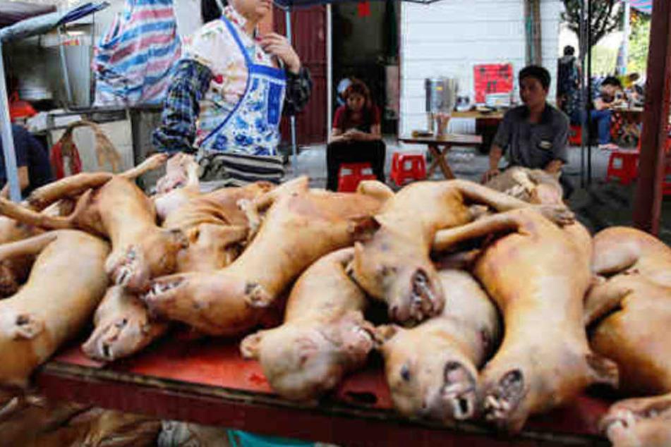 Für ein Straßen-Festival: Hundefleisch wird in China zum Verkauf angeboten.