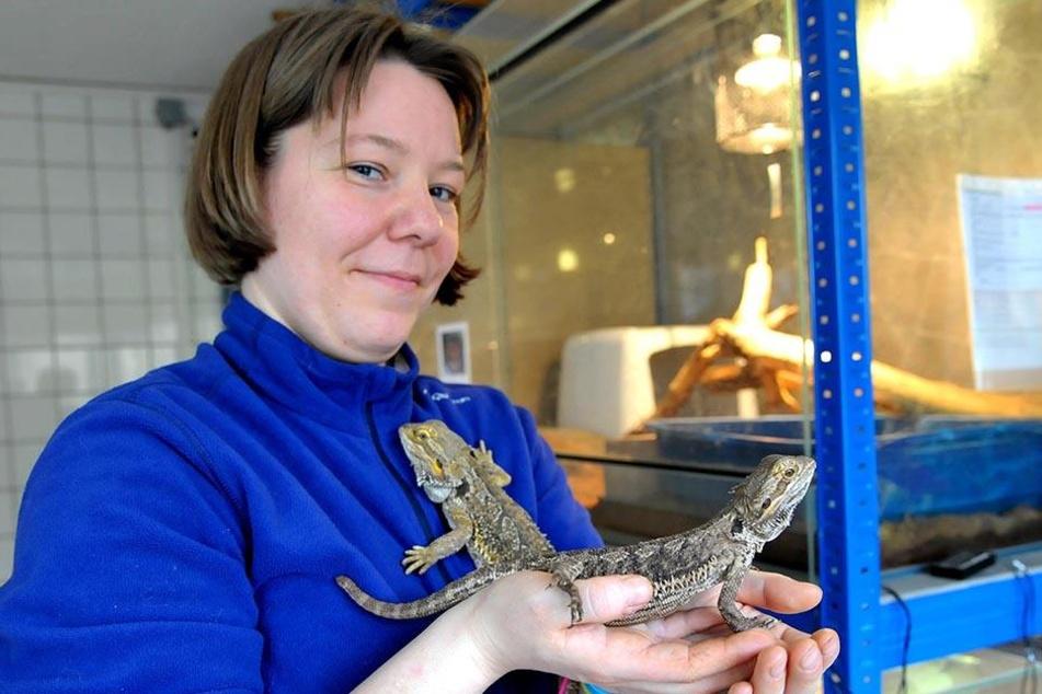 Tierpflegerin Melanie Oelschner (33) mit zwei Bartagamen.