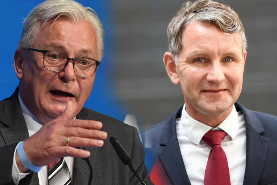 Höcke und Co.: Zerstören die rechten Hardliner die AfD?