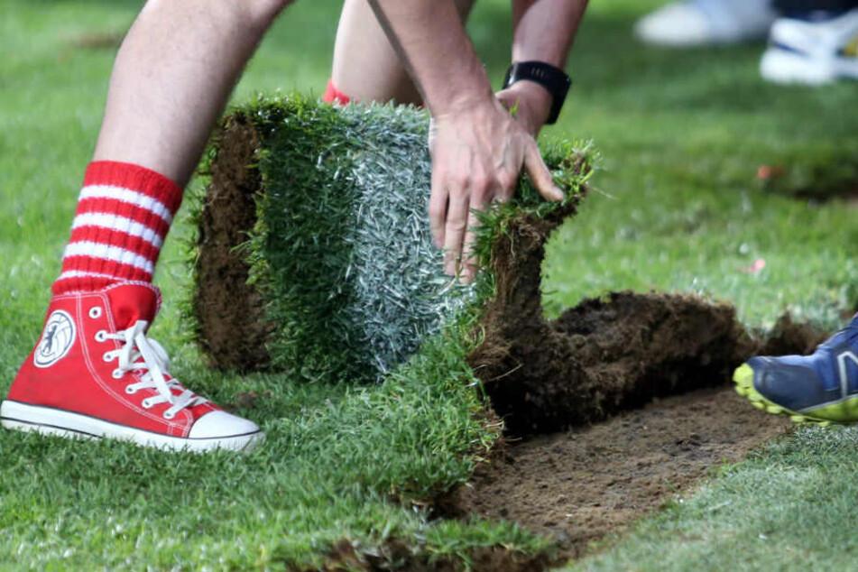 Fans sichern sich den heiligen Rasen.