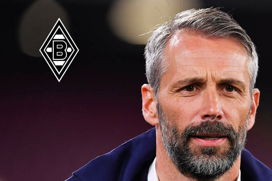 Fast fix: Rose neuer Trainer von Borussia Mönchengladbach!