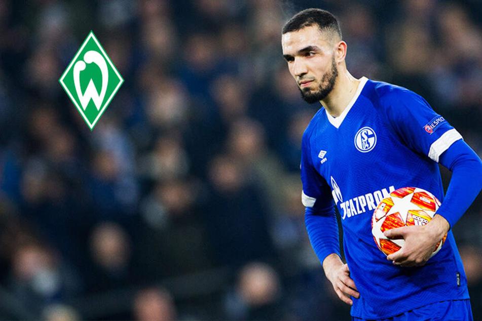 Schalke löst wohl nächsten Problemfall: Bentaleb vor Wechsel zu Werder Bremen!