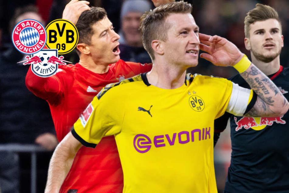 CL-Auslosung: FC Bayern, RB Leipzig und BVB drohen Hammer-Gegner!