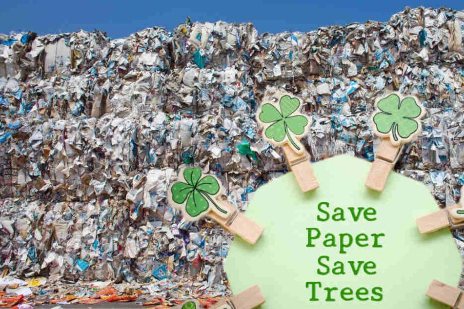 Stadtverwaltung reduziert Papierverbrauch um die Hälfte, und Ihr könnt das auch!