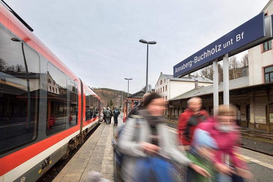 """Wenn die Teststrecke für """"Geisterzüge"""" kommt, könnte das Viadukt in Markersbach wieder mehr Verkehr erleben. Heute fahren dort nur noch Sonderzüge für Events."""