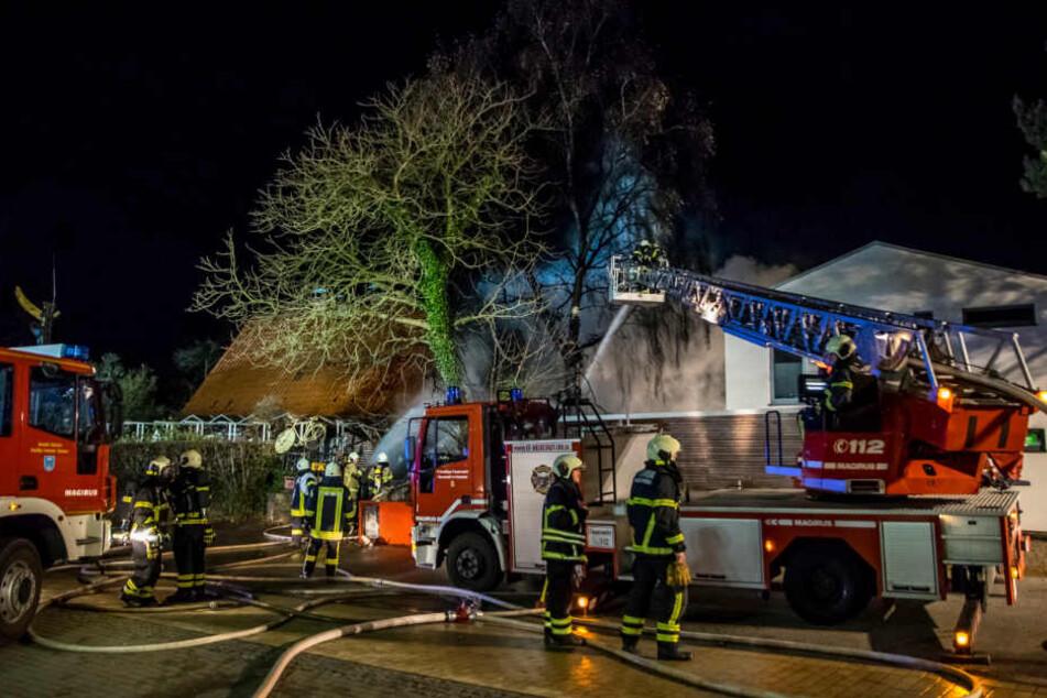 Bei dem Brand des Sierksdorfer Bananenmuseum waren rund 120 Feuerwehrmänner im Einsatz.